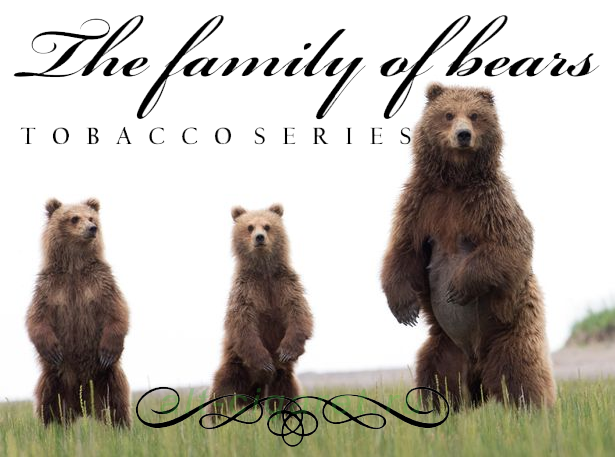 Жидкость THE FAMILY OF BEARS