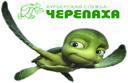 курьерская доставка по Москве и СПб